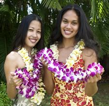 Leigreeting hawaii activities attractions start your hawaii vacation off with aloha arrange a traditional flower lei greeting for your arrival at the kona international airport m4hsunfo