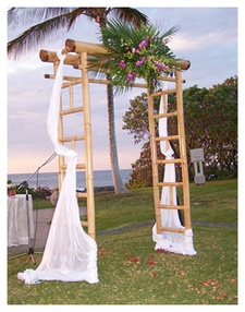 Special events props decor hawaii activities attractions small wedding arch with florals junglespirit Choice Image